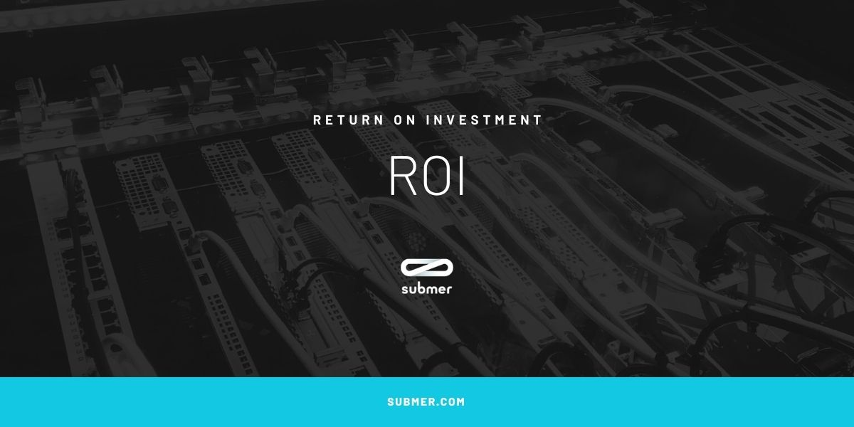 roi meaning